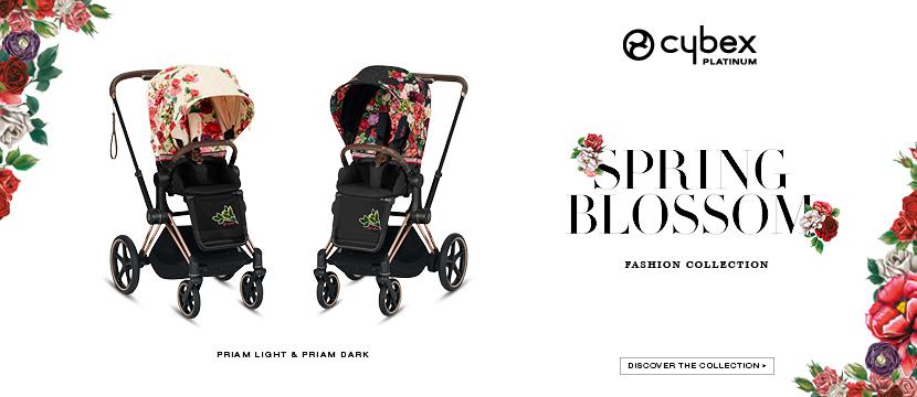 SpringBlossom Web banner Template 20204