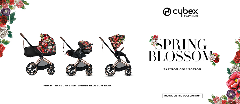 SpringBlossom Web banner Template 20203
